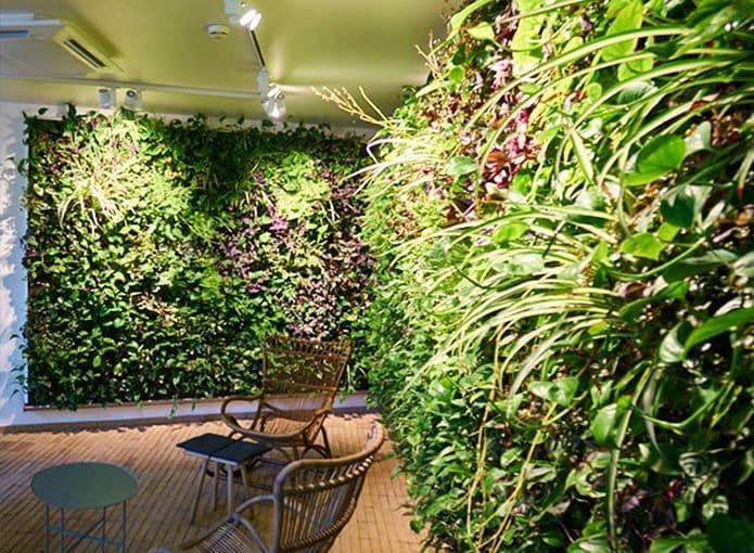 695-Systemy_zielone-ściany-wewnętrzne