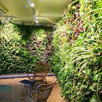 Systemy_zielone-ściany-wewnętrzne2